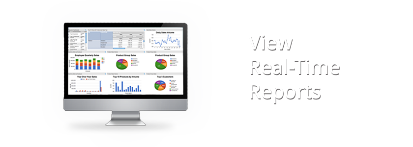 View Real-Time Reports